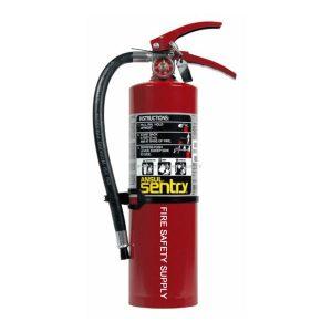 Ansul 442257 Sentry 5 lb. FORAY Extinguisher (AA05S-1)