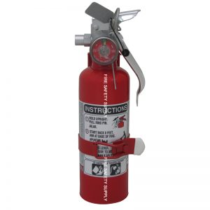 Amerex A620T 1 lb. Regular Dry Chemical Extinguisher