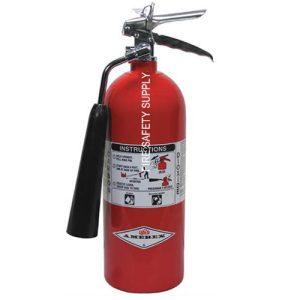 Amerex 322 5 lb. Carbon Dioxide Extinguisher