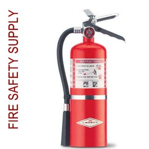 Amerex B409T 5 lb. Regular Dry Chemical Extinguisher