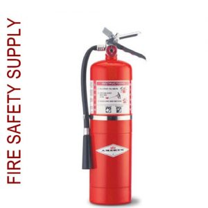 Amerex B447 10 lb. Regular Dry Chemical Extinguisher