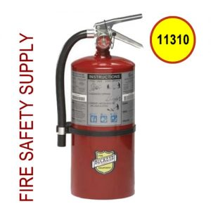 Buckeye 11310 ABC Multipurpose Dry Chemical Hand Held Fire Extinguisher