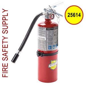 Buckeye 25614 ABC Multipurpose Dry Chemical Hand Held Fire Extinguisher